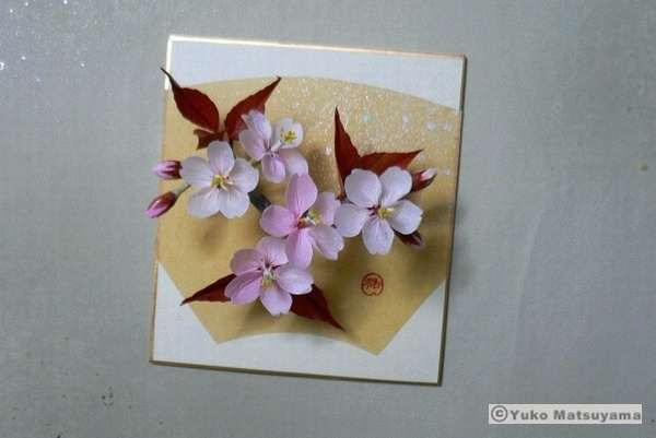 14-spring-kyoto-s