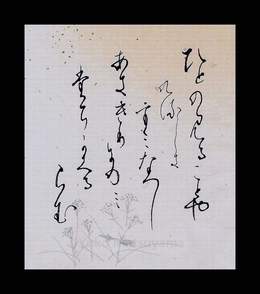 akigiri-1