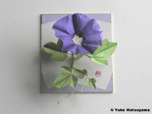 asagao_purple