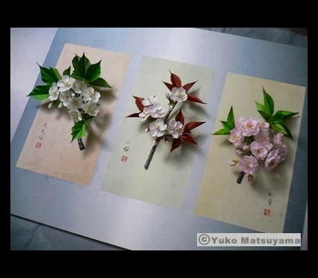 asean-sakura-2-s