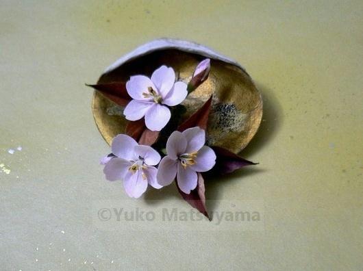 kai-yamazakura-1