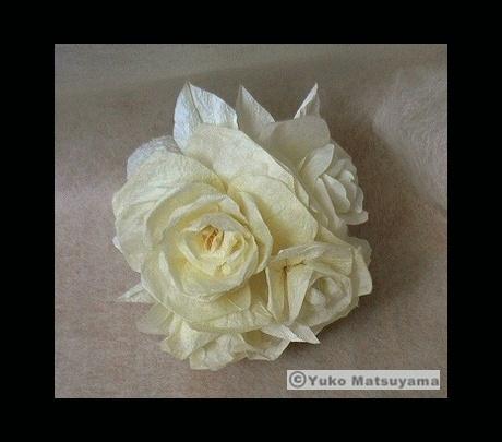 rose-4-s