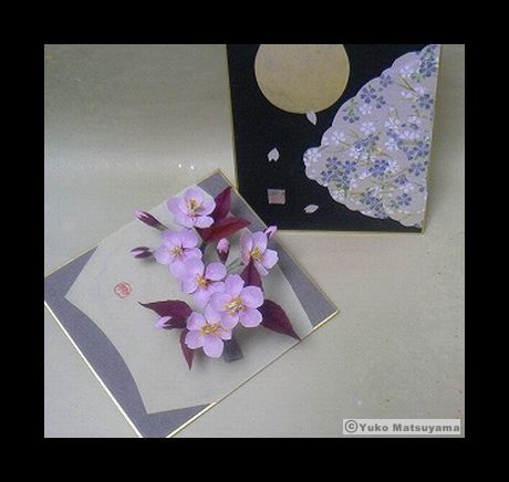 sakura-12-spring-i-2-s