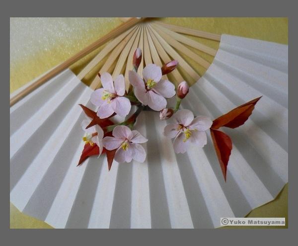 senmen-14-sakura-s