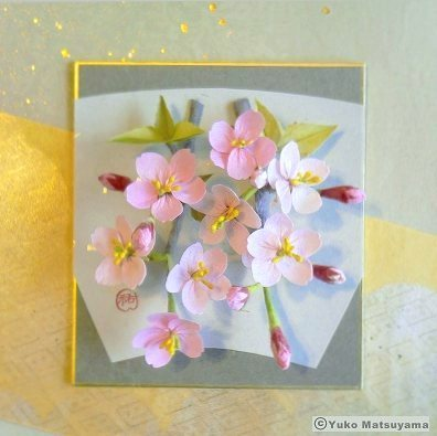 shidare-sakura-10-1