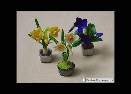 springflower-11-1-s