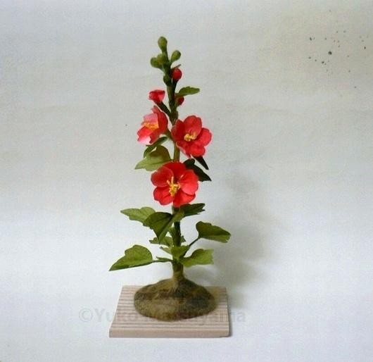 tachiaoi-sikisai
