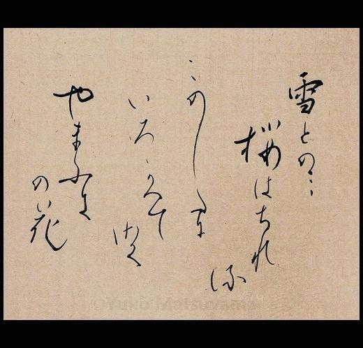 yamabuki-16-2