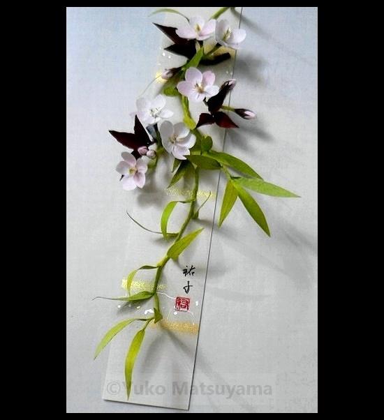 yanagi-sajura-hina-1